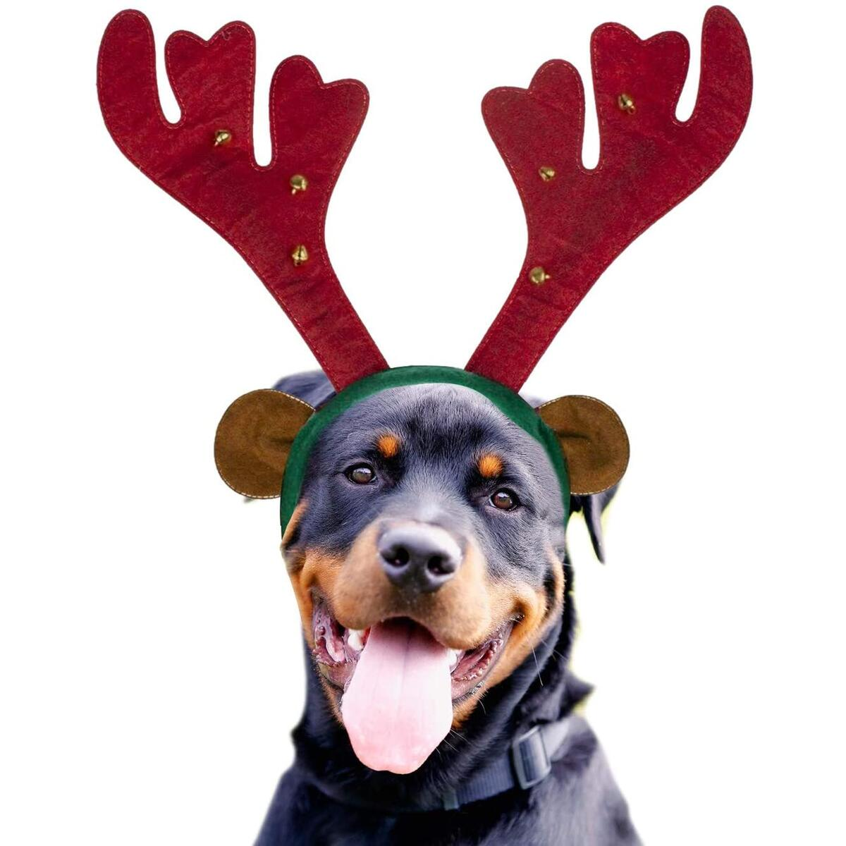 Pawz World Dog Reindeer Antlers Headband Costume - Perfect Dog Christmas Outfit for Holiday Family Photo