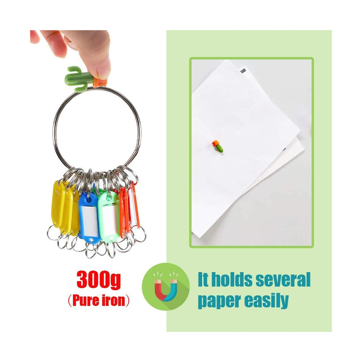 48 Pcs Decorative Refrigerator Magnets,Tiny Fridge Deocr,6 Style Cactus, Perfect for Metal Shelf,Filing Cabinet,Office Cube etc. Great for Holding Photos,Pictures,Papers,Invites,Receipt,Small Stuff