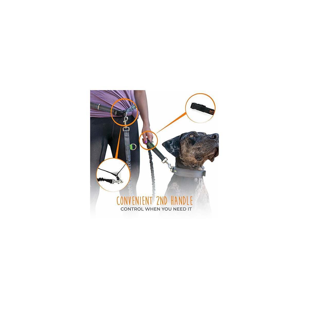 Mighty Paw Hands Free Dog Leash, Premium Running Dog Leash, Lightweight Reflective Bungee Dog Leash