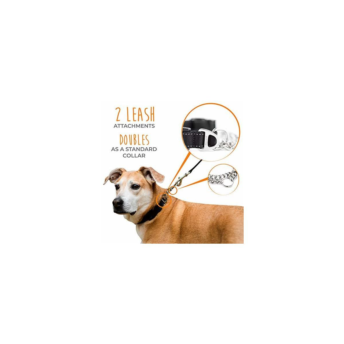 Mighty Paw Martingale Collar, Training Dog Collar, Limited Cinch Chain Pet Gear for No Pull Leash Walking