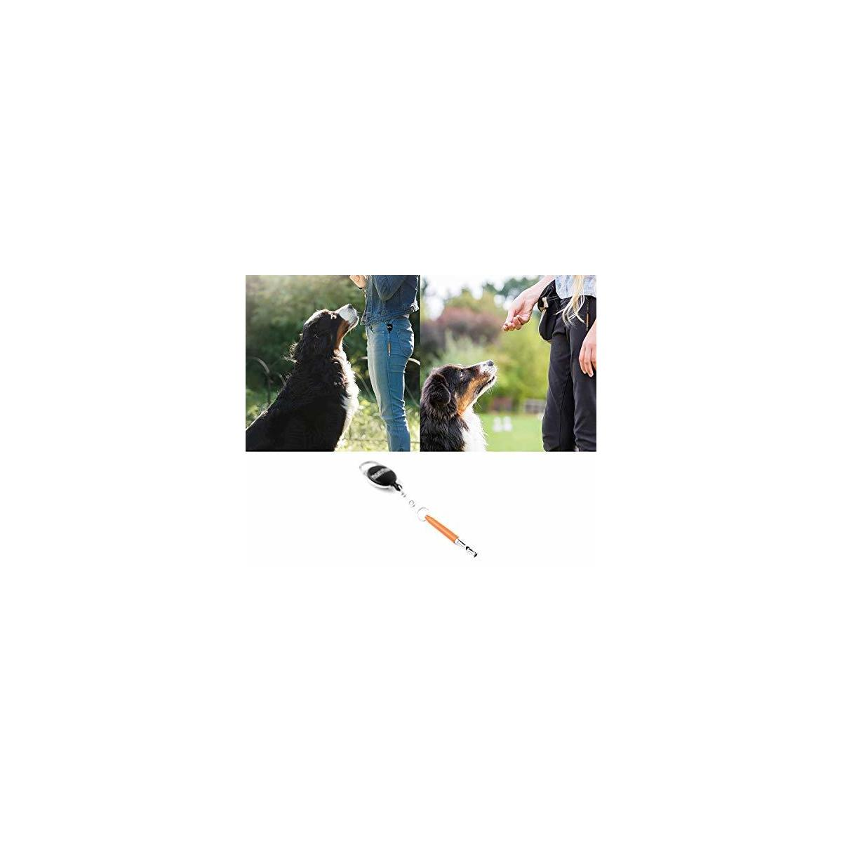 Mighty Paw Training Whistle, Silent Dog Whistle with Retractable Belt Attachment and Neck Lanyard, No Bark Dog Training Tool for Obedience and Recall