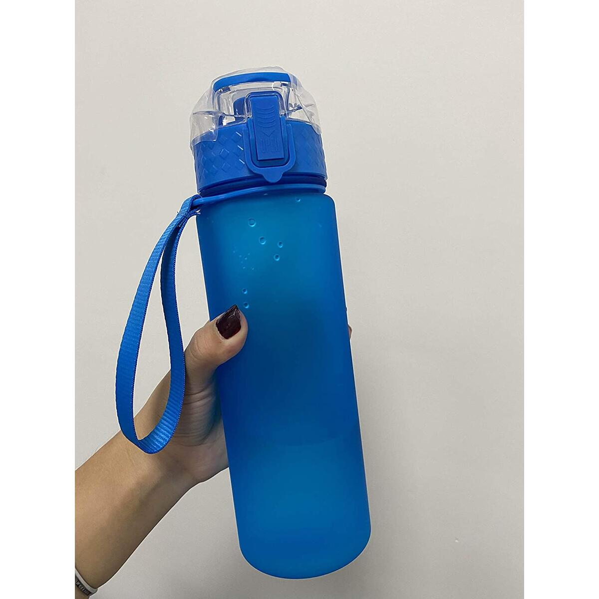 Wichmann | Motivational water bottle leak proof 740ml bottle high performance | daily useable for drinking purpose 32 oz water bottle.(Blue)
