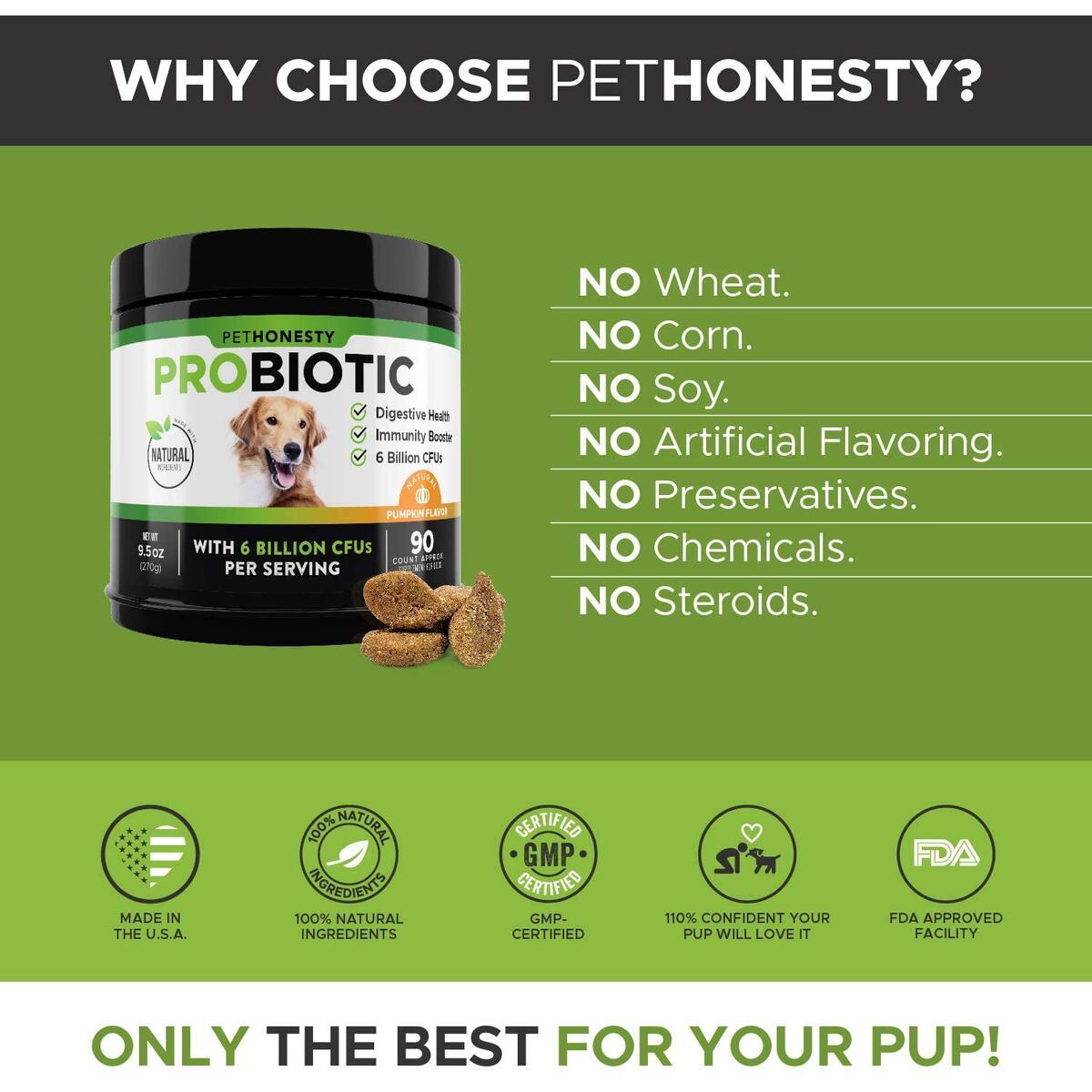 Probioitc Treats (Pumpkin)