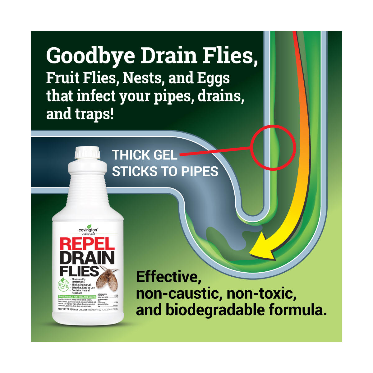 Covington Drain Fly Repellent, Drain Fly Treatment, Eliminates Drain Flies for Kitchen and Bathroom Sinks, Say Bye to Pesky Drain Flies