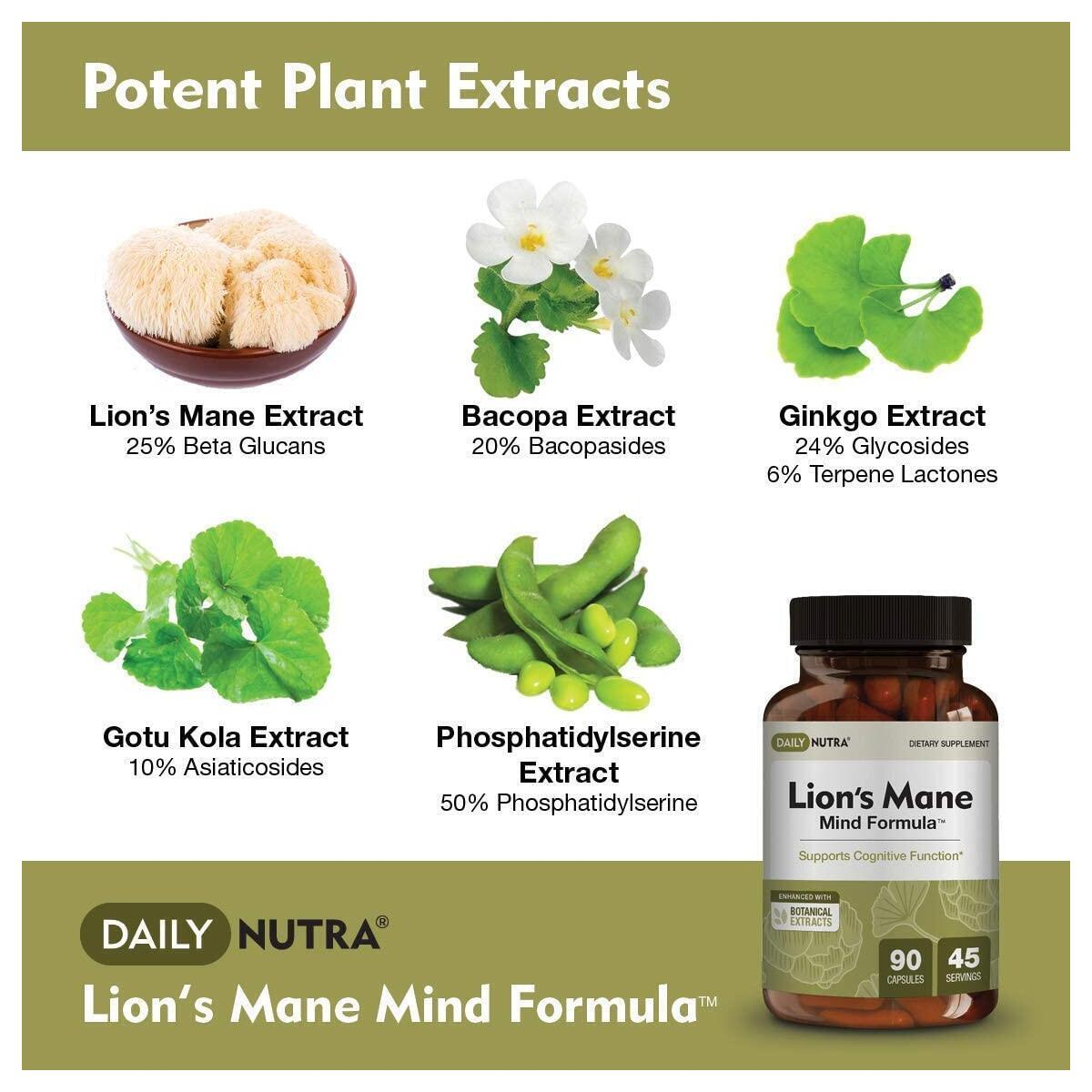 Lion's Mane Mind Formula by DailyNutra - Nootropic Supplement for Cognitive Health | Organic Mushroom Extract with Bacopa, Gingko, Gota Kola, and Huperzine-A