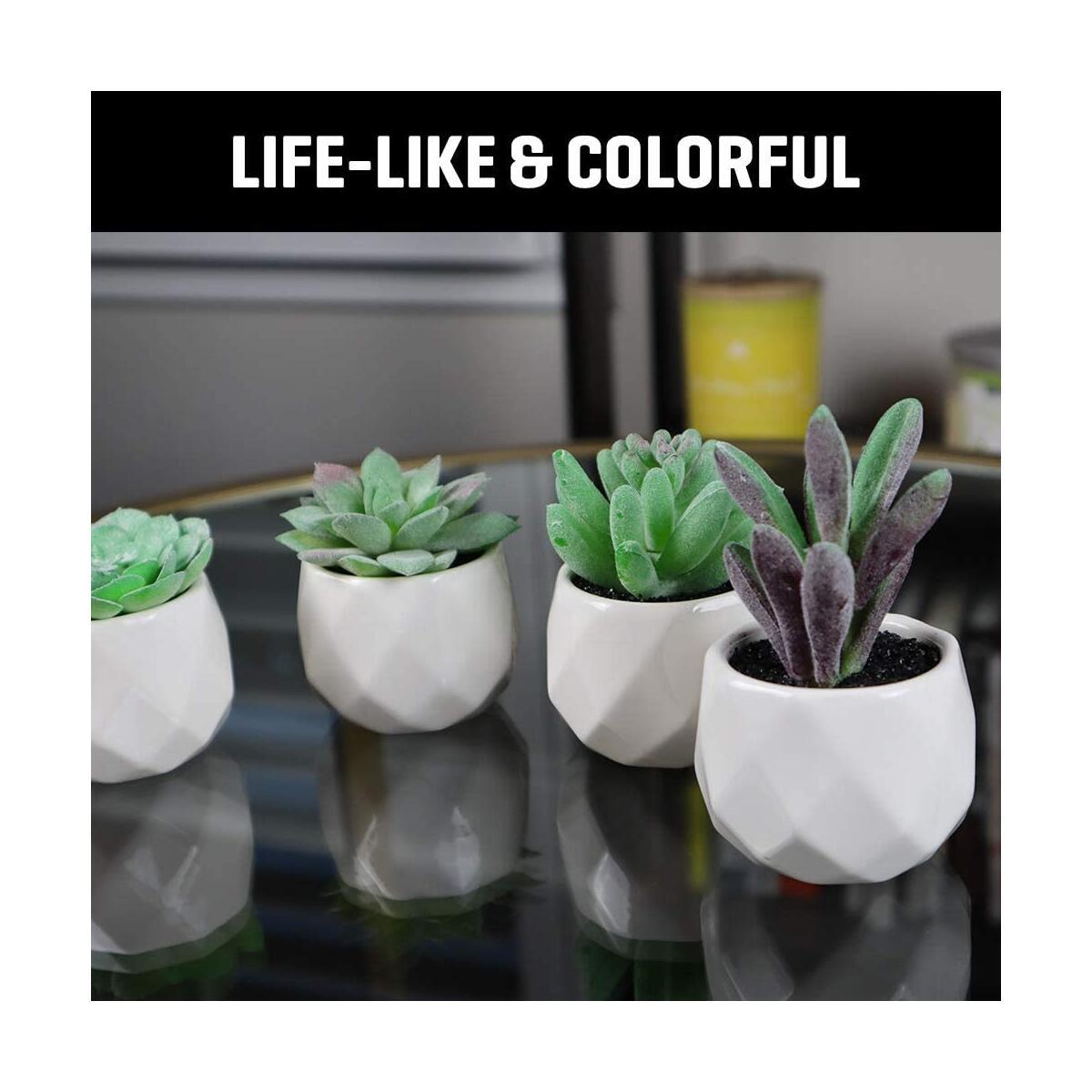 Artificial Succulent Plants (Set of 4)