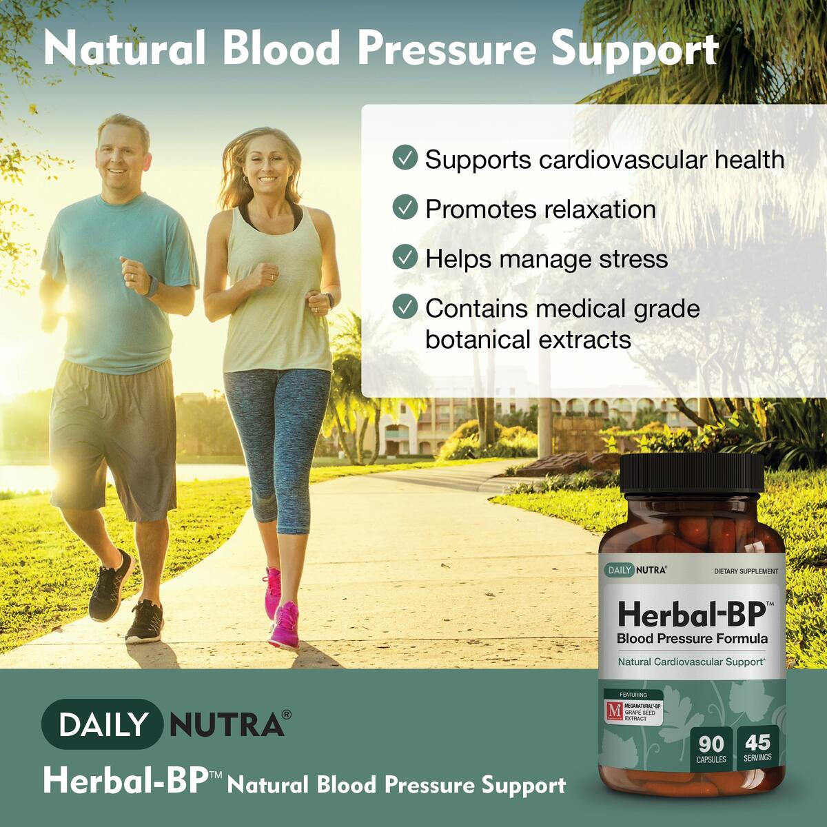 Herbal-BP Natural Blood Pressure Supplement by DailyNutra - Supports Cardiovascular Health & Stress Management | Medical Grade Plant Extracts - Safe, Long-Term Support
