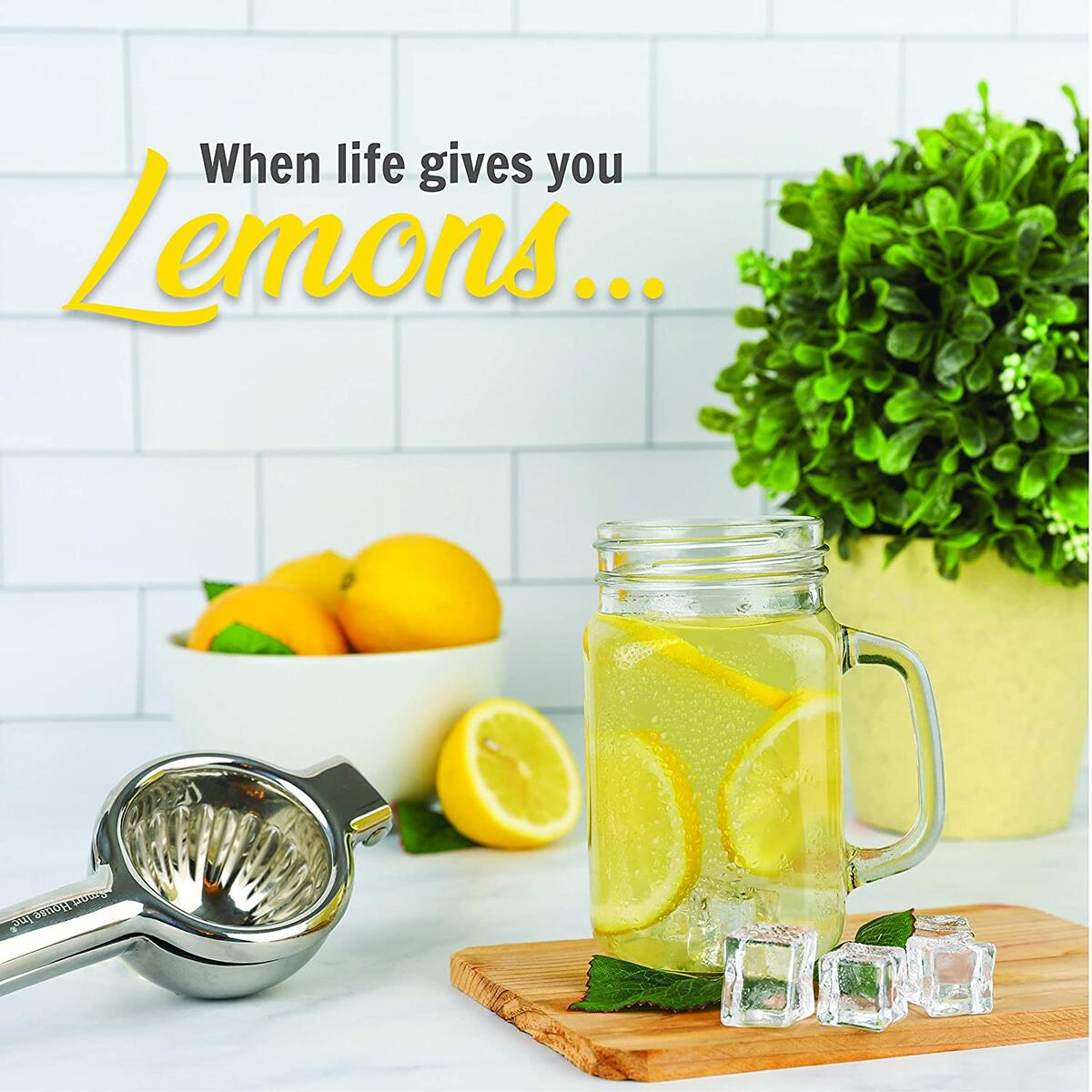Extra-Large Stainless Steel Lemon Lime Squeezer - Manual Press - Citrus Juicer with Filter