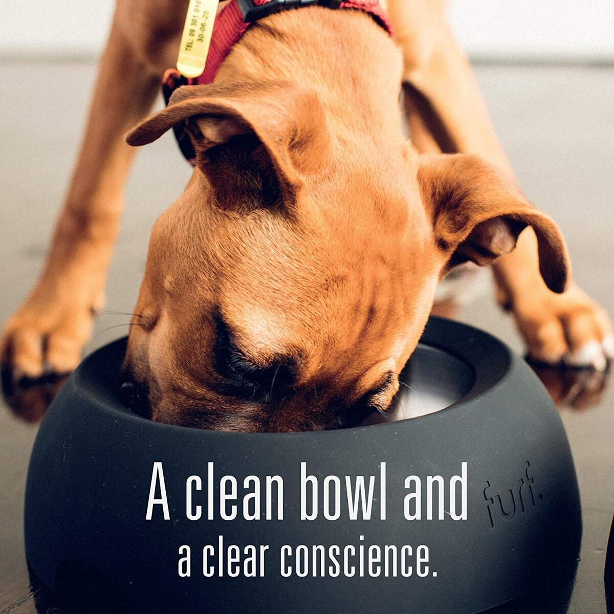 Meat Mates BPA-Free & Gelatin-Free Canned Dog Food