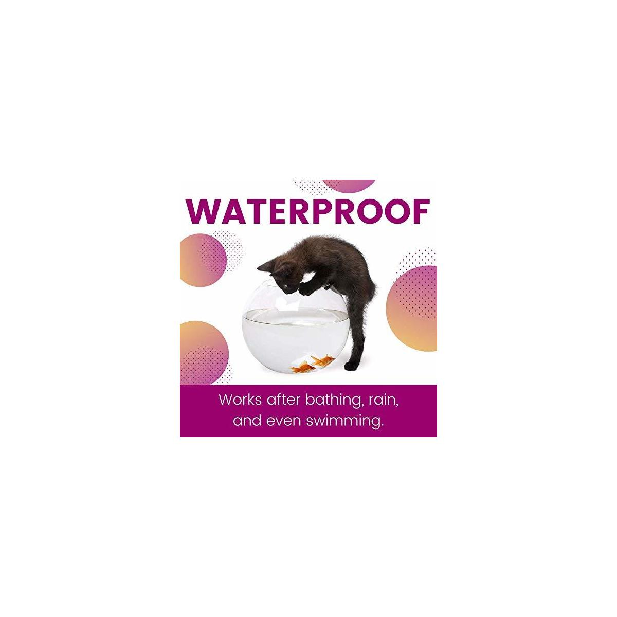 ZoGuard Plus Flea and Tick Prevention for Cats, Over 1.5 lbs