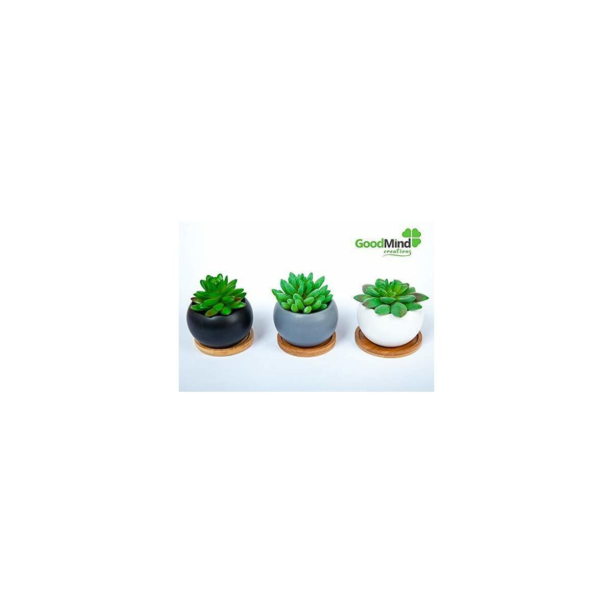 Succulent Cactus Plant Mini Pots with Bamboo Tray – Set of 3 Indoor Outdoor Flower, Herbs Cute Ceramic Planters for Home, Office Decoration. Mather's Day House Decor Gift for Real or Artificial Plants