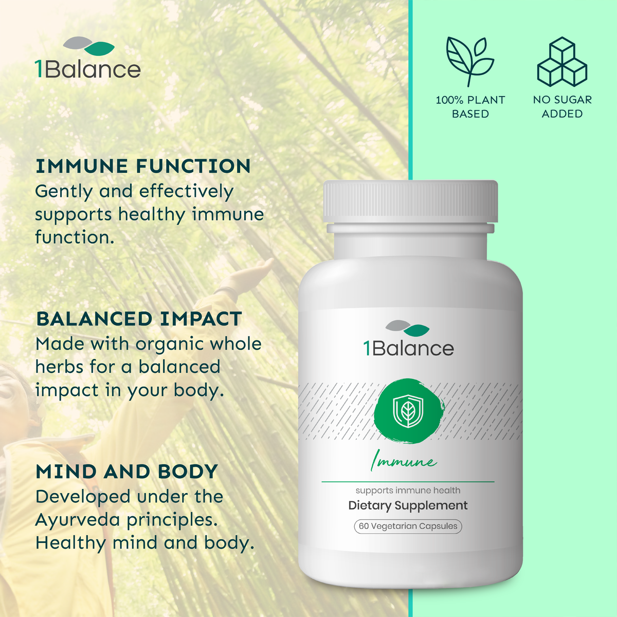 1Balance Immune, Contains 9 Ayurvedic Herbs Including Turmeric and Indian Tinospora, Supports Healthy Immune Function, Organic Whole-Herb Supplements (60 Vegetarian Capsules)