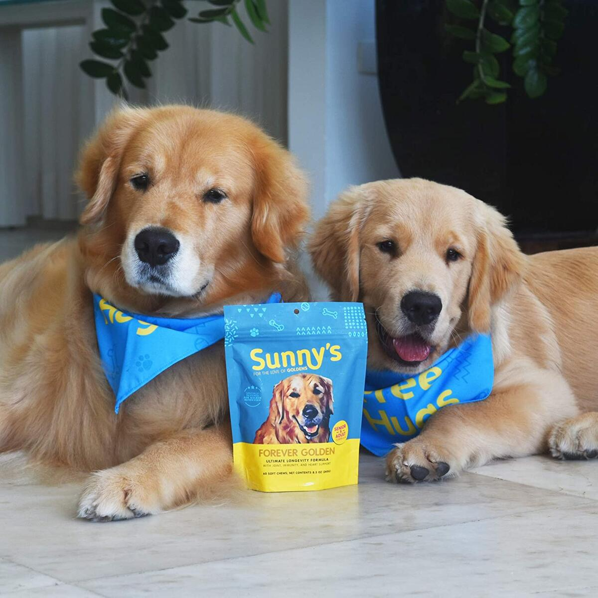 Supplement treats for Golden Retriever Dogs - Great for ALL dogs too!