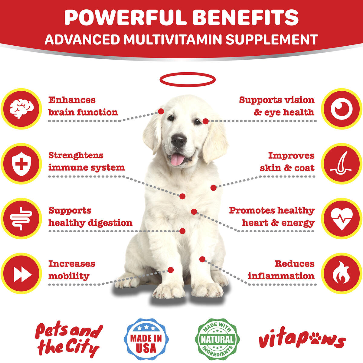 Dog Multivitamin with Hemp Oil - Dog Vitamins - Omega 3 Fish Oil for Dogs - Energy, Joint Support, Skin & Coat, Immune System, Brain - Natural Probiotics for Digestion - 120 Bacon Flavor Treats