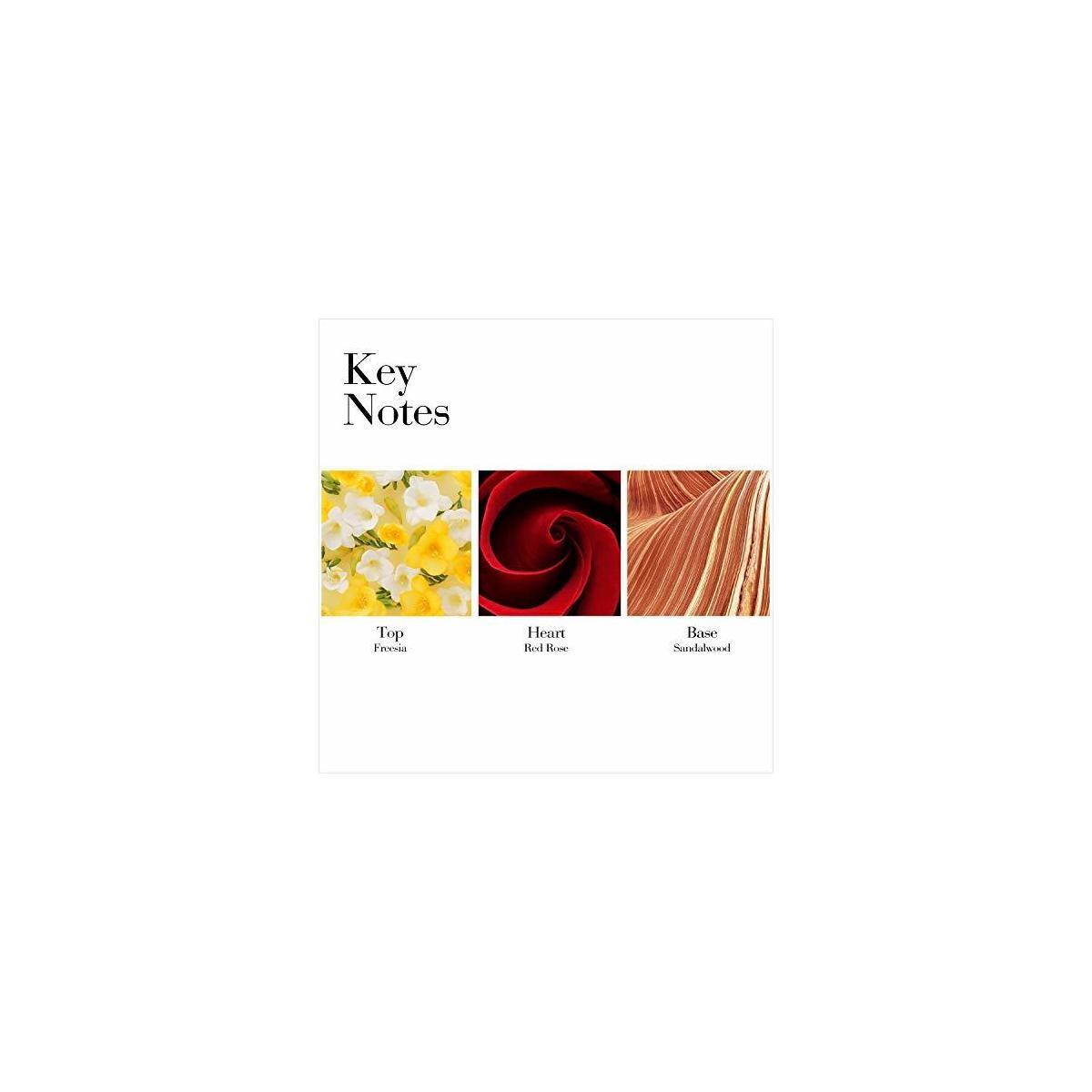 Elizabeth Arden Red Door 1.7 oz Fragrance Gift Set
