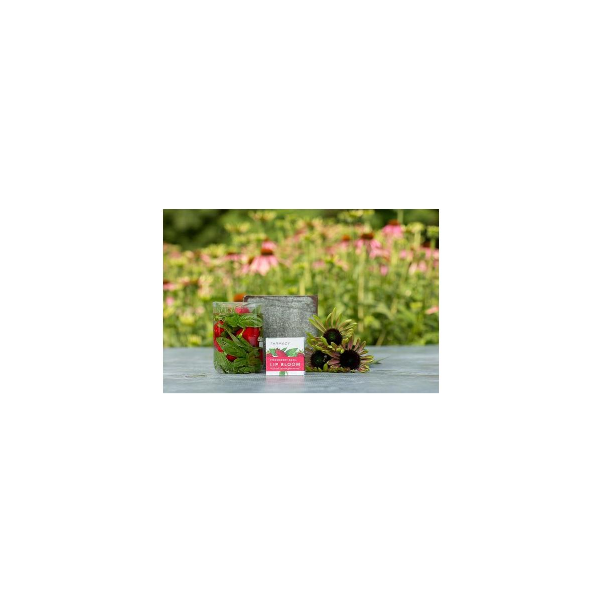 Farmacy Lip Bloom - Soothing Herb-Infused Natural Lip Balm & Gloss