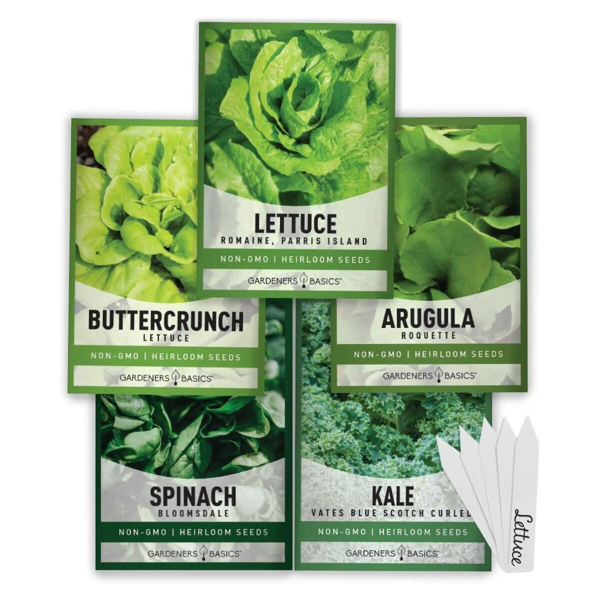 Lettuce Seed Assortment