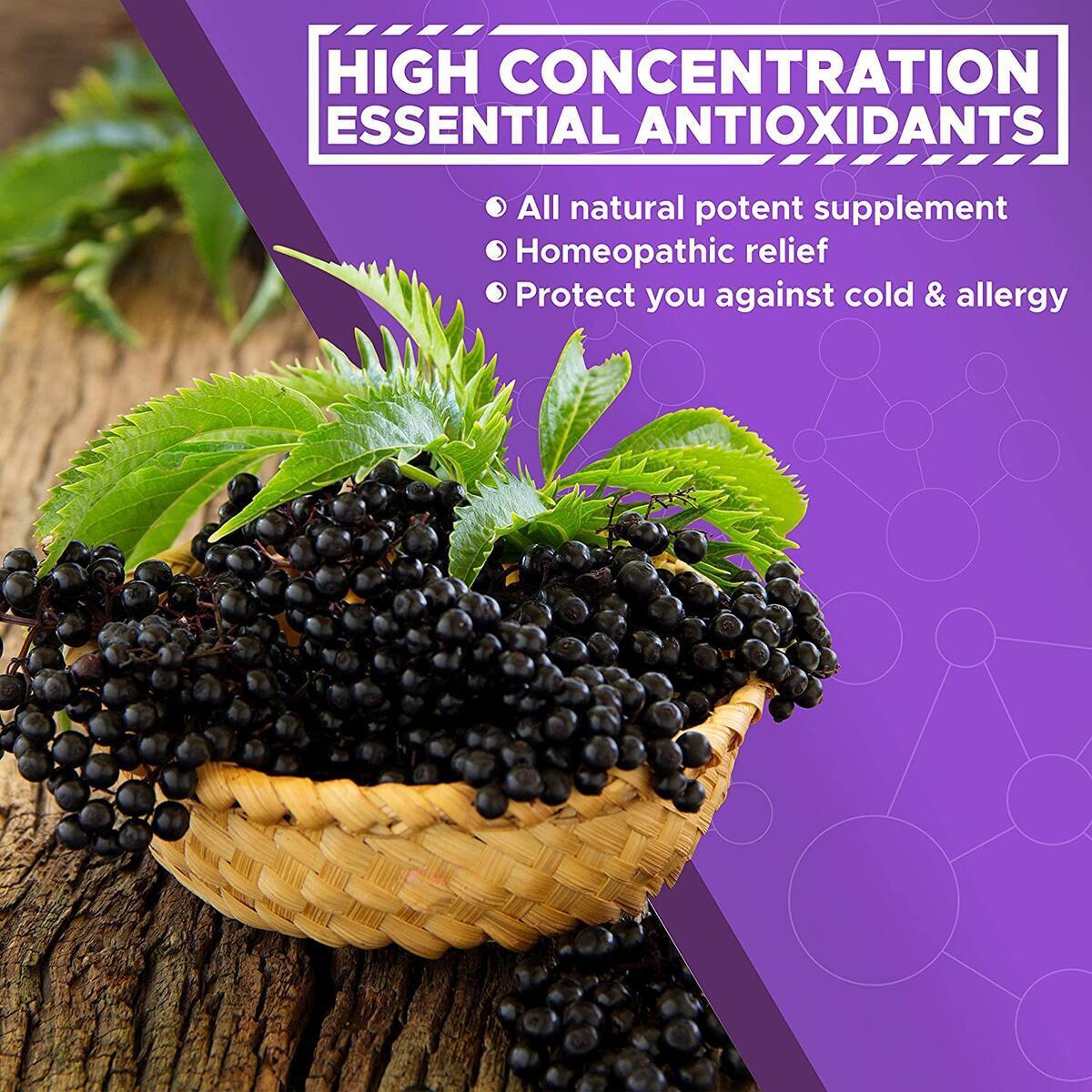 VITBOOST Extra Strength Vegan 200mg Organic Elderberry Syrup | Immune Support for Kids & Adults | Antioxidant Supplement (2oz, 30-Day Supply) Berry Flavor Sambucus Elderberry Liquid Extract Drops