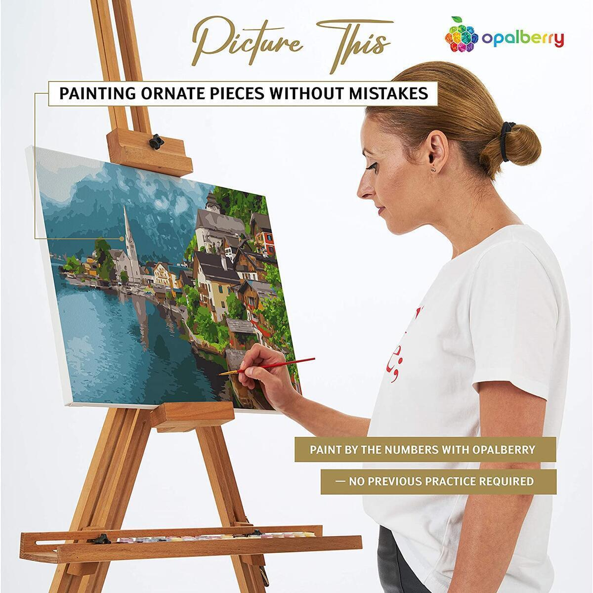 DIY Paint By Numbers For Adults, Framed Canvas, 16x20