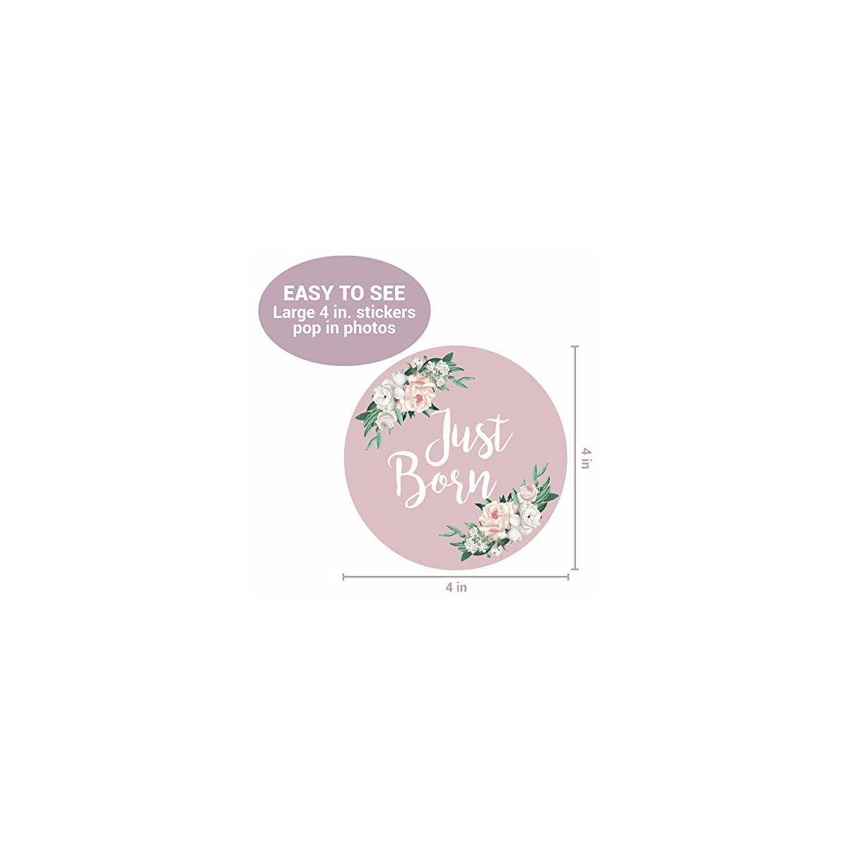 Baby Monthly Stickers | Floral Baby Milestone Stickers | (Set of 24) | Newborn Girl Stickers | Month Stickers for Baby Girl | Keepsake Pink Purple Gray | Newborn Monthly Milestone Sticker (Set of 24)