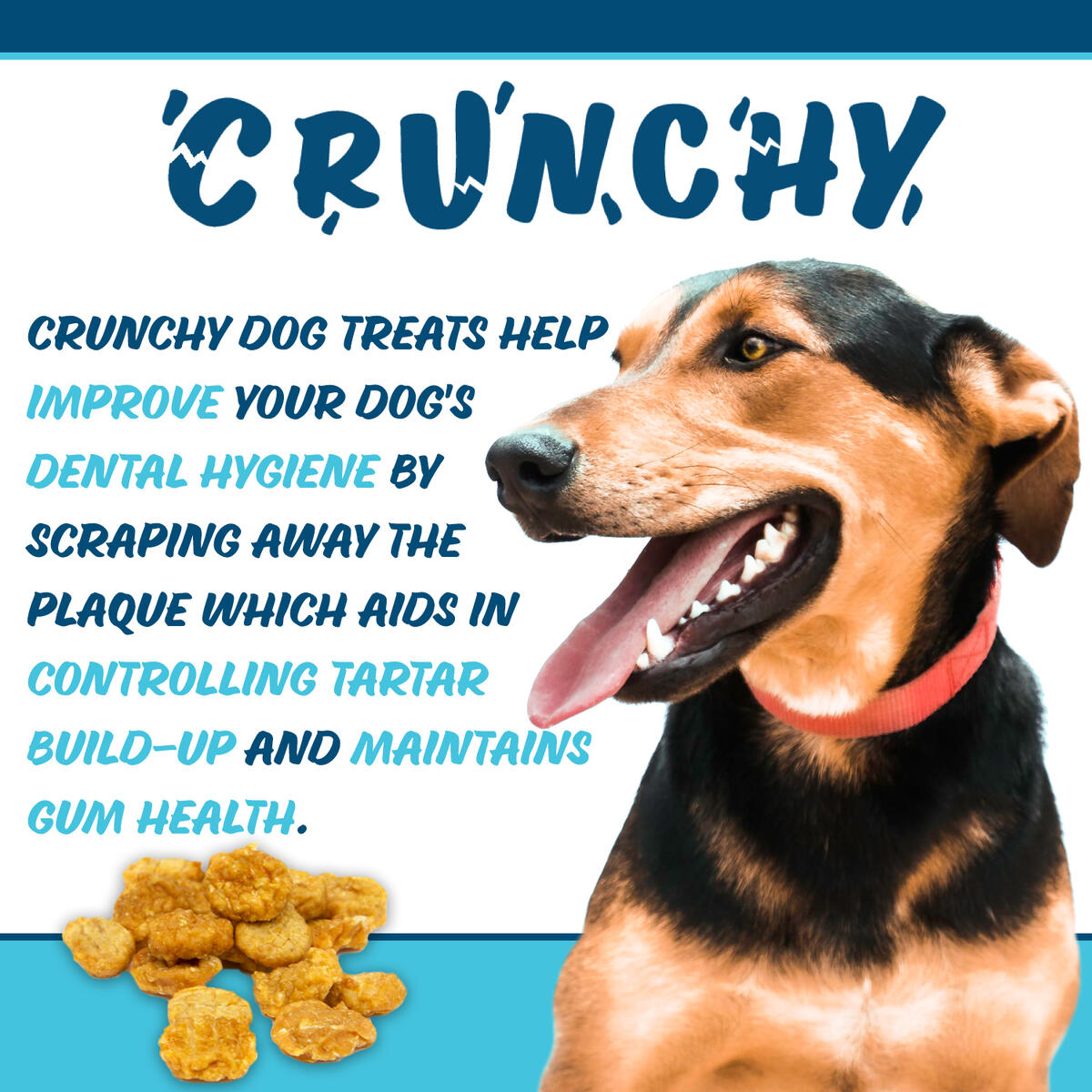 Texas Pet Company Jerky Crunchy Bits Dog Treats - Single Ingredient - for Toy-Small Dogs - Made in The USA - 13.5oz resealable jar