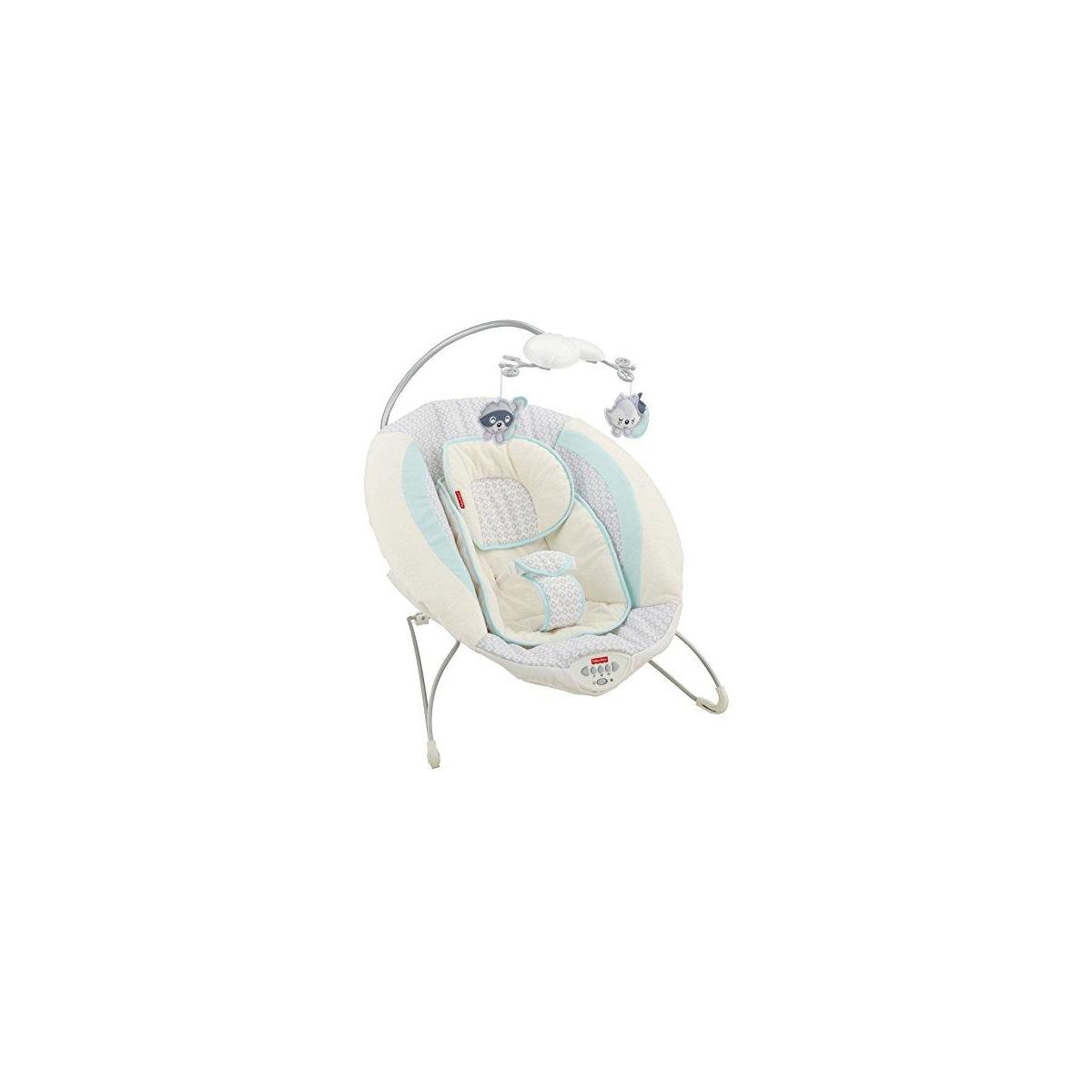 Fisher-Price Deluxe Bouncer (Moonlight Meadow and SnugaFawn)