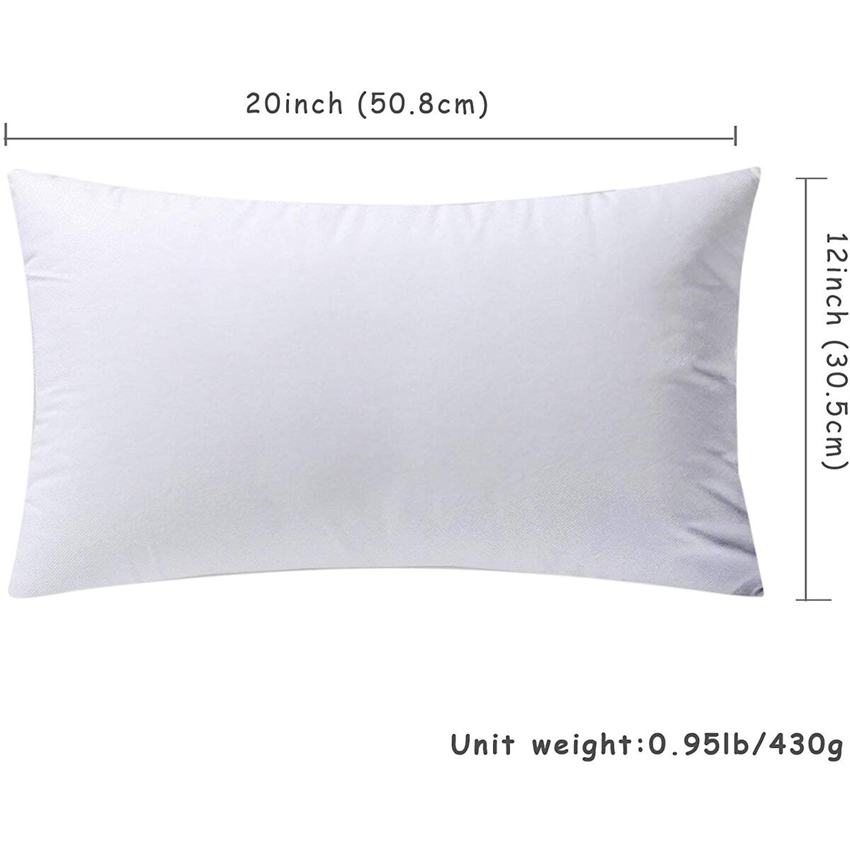 Eggishorn Throw Pillow Inserts (Pack of 2) 12x20 inch Lumbar Pillow Stuffer Fully Filling with 430g Premium Resilient Microfiber Suitable for Soft Bed and Couch Cushion