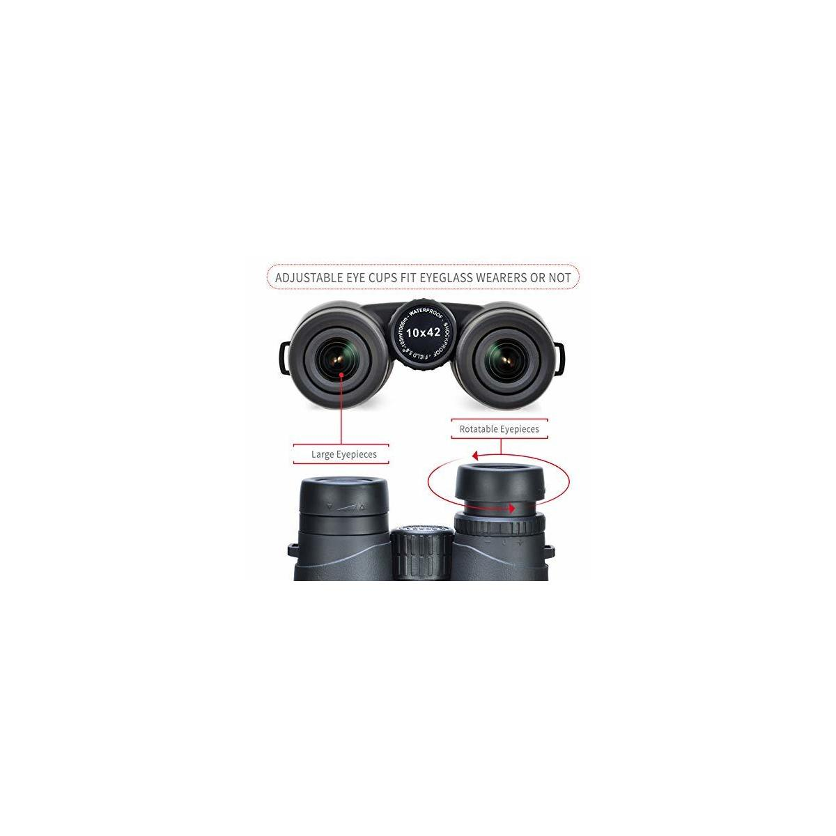 Unjust Optics 10x42 Binoculars
