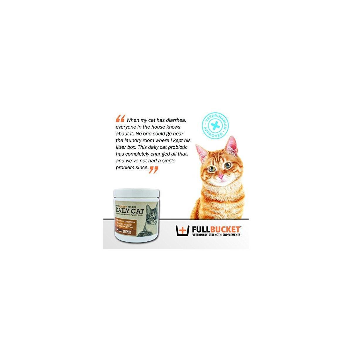 FullBucket Daily Cat Probiotic Powder 87gm