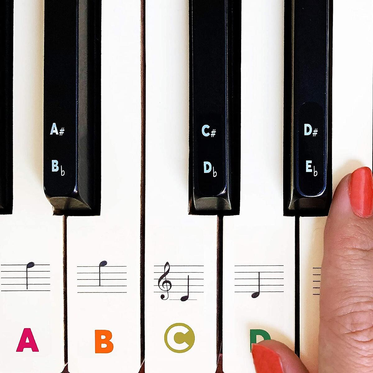 Piano Keyboard Stickers for Beginners 88/76/61/54/49/37 Keys. Removable, Transparent, Multi-Colored Piano Stickers. Perfect for Kids, Big Bold Letters, Easy to Install - with Cleanning Cloth