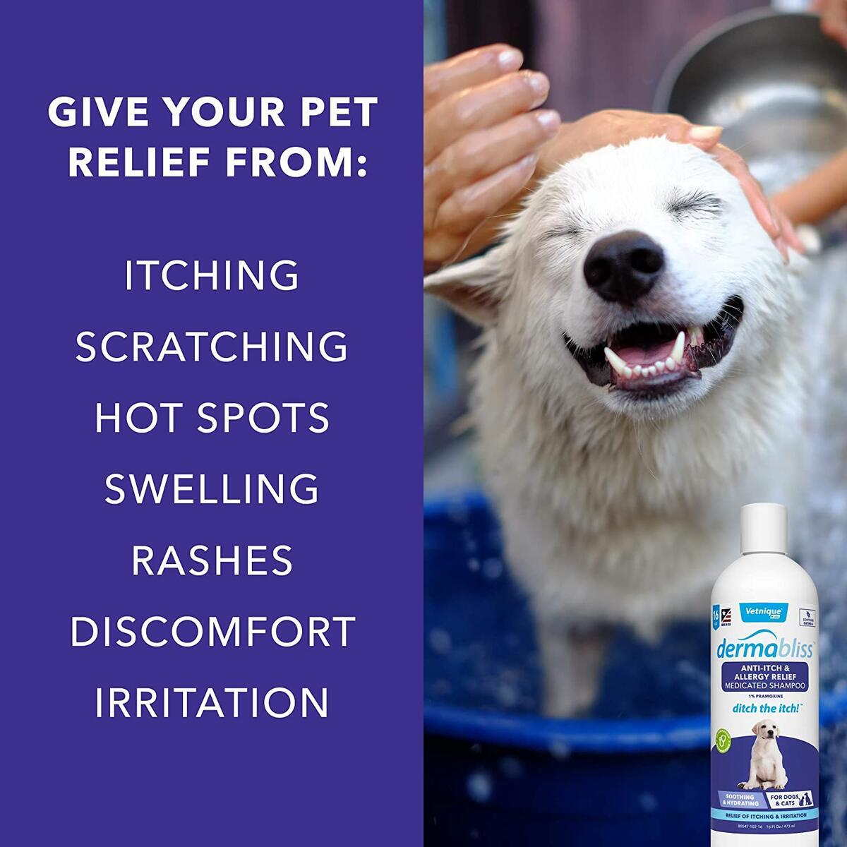 Dermabliss Anti Itch & Allergy Relief Medicated Shampoo for Dogs and Cats