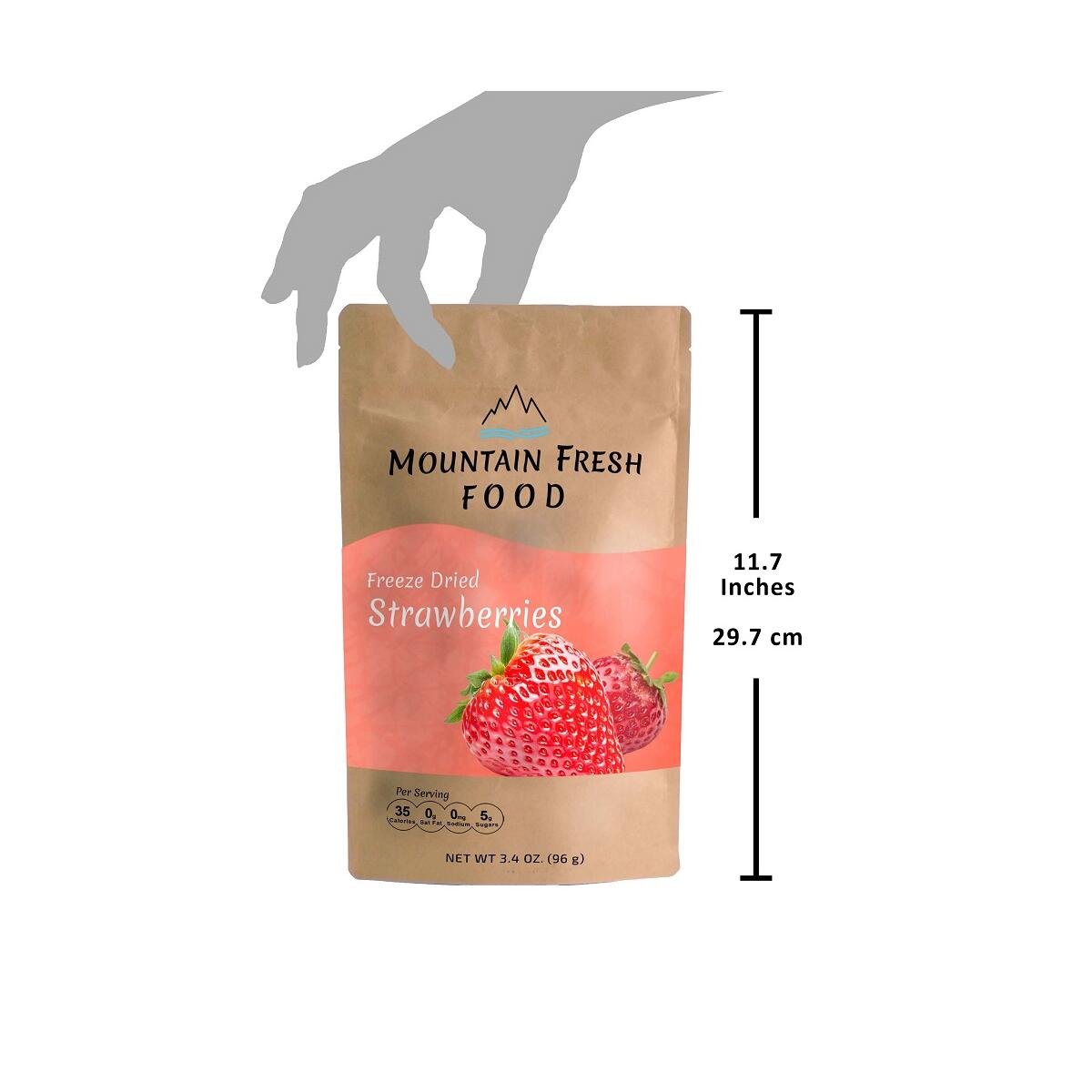 Mountain Fresh Food Freeze Dried Strawberry Chips | All Natural Healthy Dried Fruit Snacks | Crispy Strawberry Slices | Large Resealable Bag | 3.4 Ounces