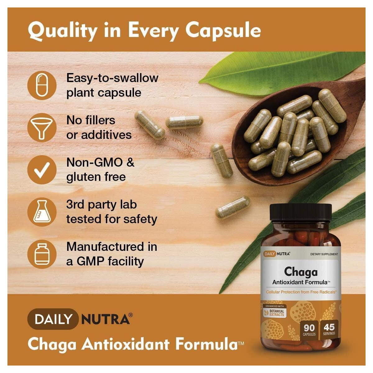 Chaga Antioxidant Formula by DailyNutra - Superfood Supplement - Protection from Free Radicals and Stress | Organic Mushroom Extract with Goji Berry, Sumac, Amla, and Clove (90 Capsules)