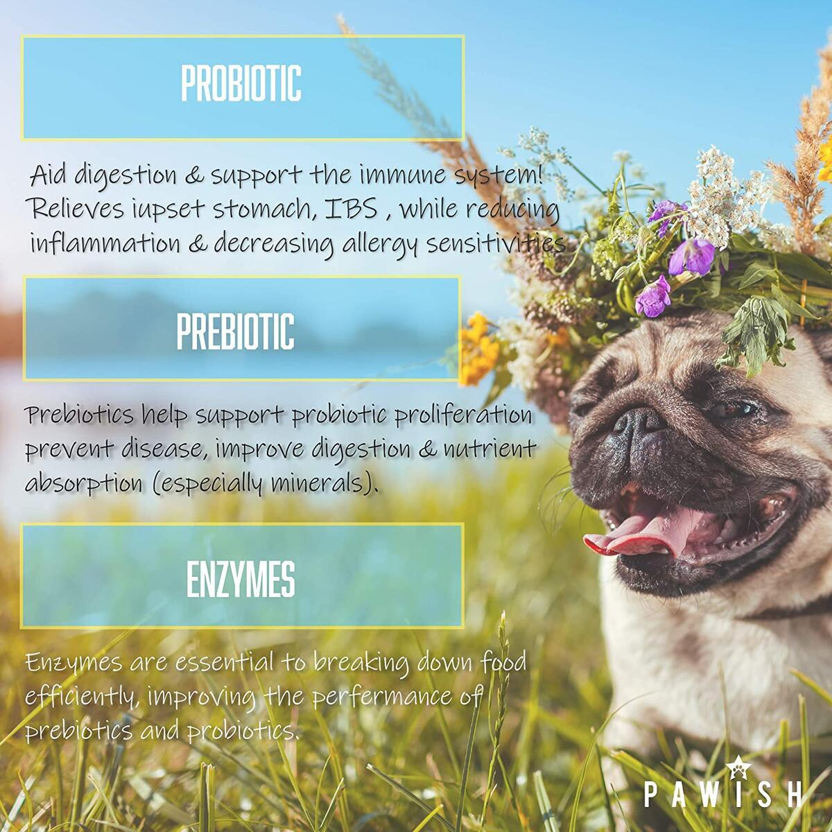 Pawish Probiotics for Dogs - with Natural Dog Probiotics, Prebiotics and Digestive Enzymes