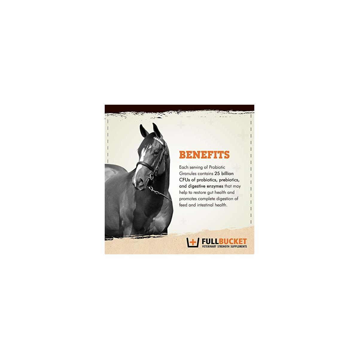 FullBucket Equine Probiotic Granules with Saccharomyces boulardii for Daily Digestive Optimization; Concentrated Formula with 25 Billion CFUs - 30 Servings