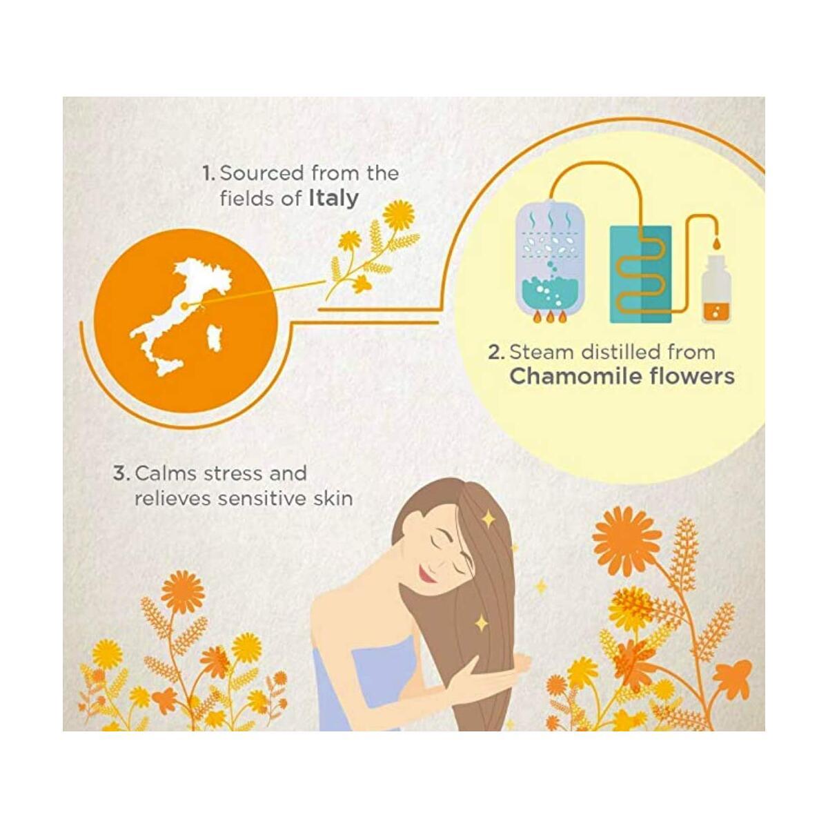 Chamomile Essential Oil - Premium Quality, Organic, 10ml
