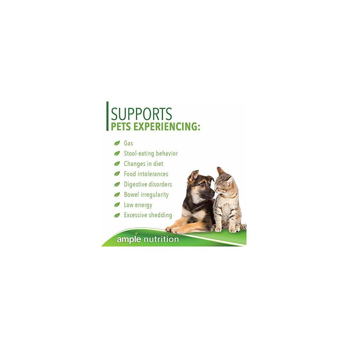 Ample Nutrition Digestive Enzymes for Dogs and Cats - 7.05oz Powder