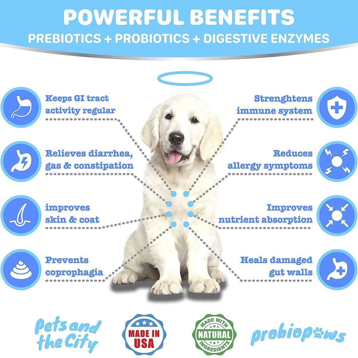 Probiotics for Dogs - Digestive Enzymes - 2 Billion CFUs Probiotics + Prebiotics - Relieves Diarrhea, Gas & Allergy - Improves Digestion & Immunity - Coprophagia Treatment - 120 Chicken Flavor Treats