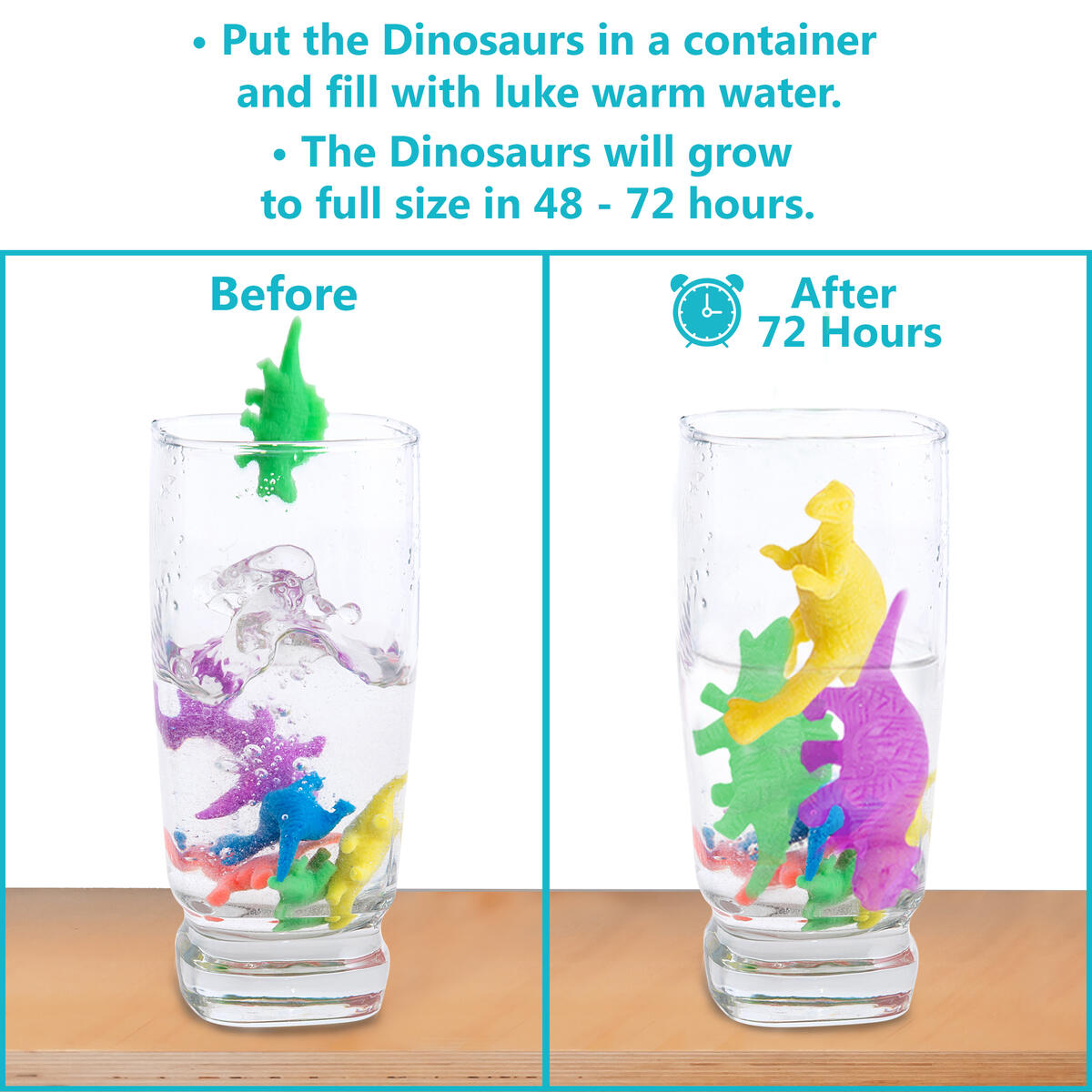 Water Growing Dinosaurs - 32 Pack - Expandable Animals
