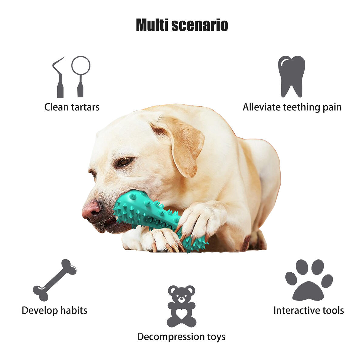 Dog Squeaky Chew Toys,Interactive Puppy Sounding Dental Toothbrush,Tooth Cleaning/Brushing/Care Chewers,Rubber Whistle Molar Stick,Simulation Training Gnawing Bone,for Small Medium Large Dogs (Blue)