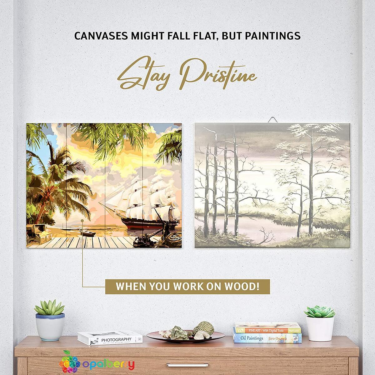 DIY Paint By Numbers For Adults, Framed Wooden Board! 16x20