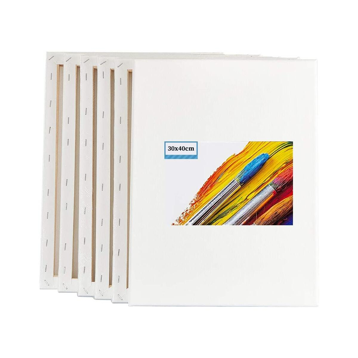 6 Pack Blank Stretched Canvas for Painting - 100% Cotton Art Canvases Frame for Painting, Stretched Canvas for Acrylic Painting with Acid Free Triple Primed Gesso (12