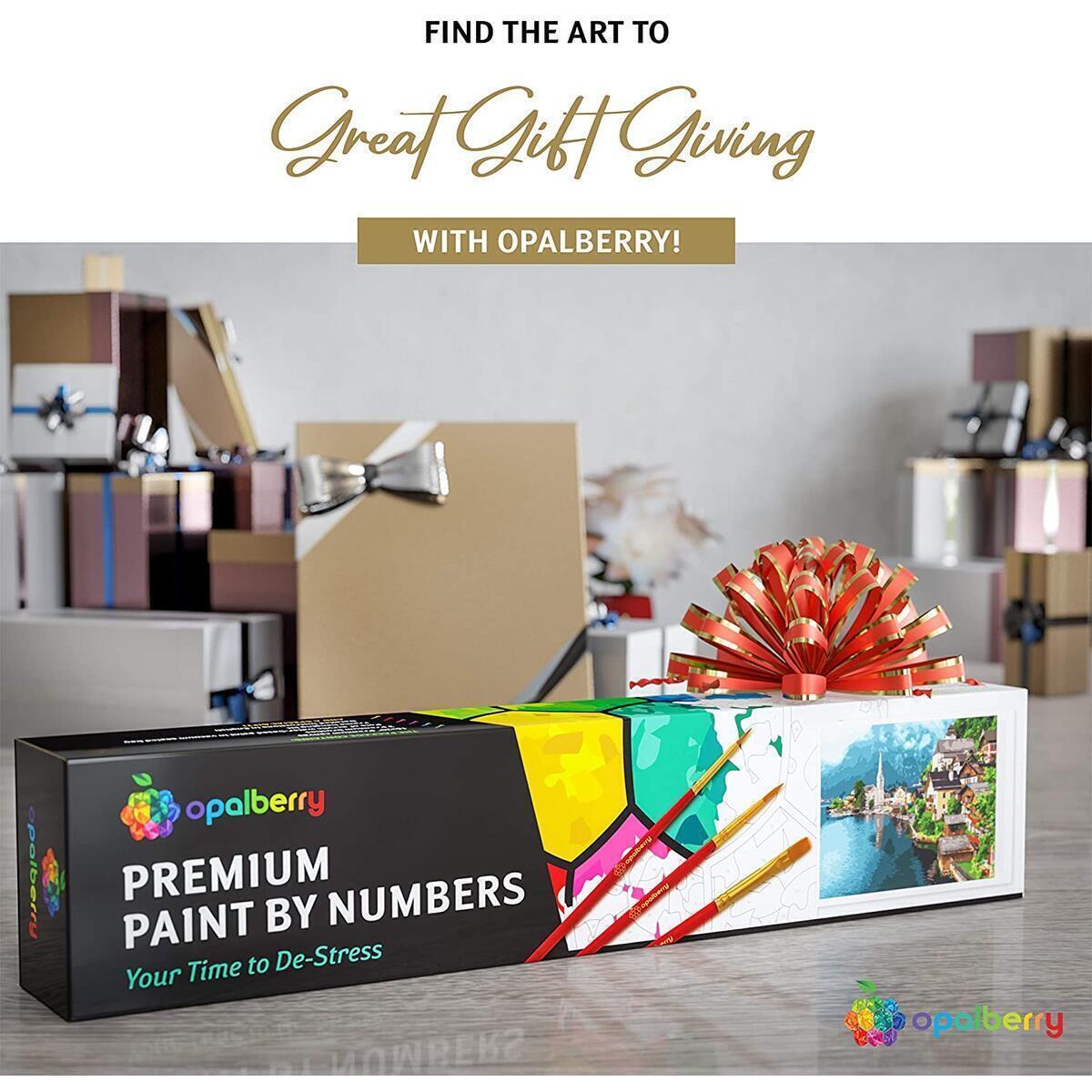 DIY Paint By Numbers For Adults, Rolled Canvas, 16x20