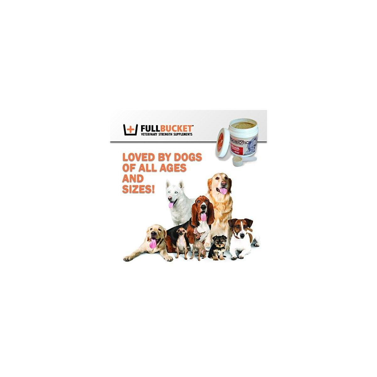 FullBucket Daily Dog Probiotic - Support Natural Digestion, Treat & Prevent Diarrhea - Probiotics, Prebiotics & Digestive Enzymes All in One Tasty Probiotic Powder for Dogs