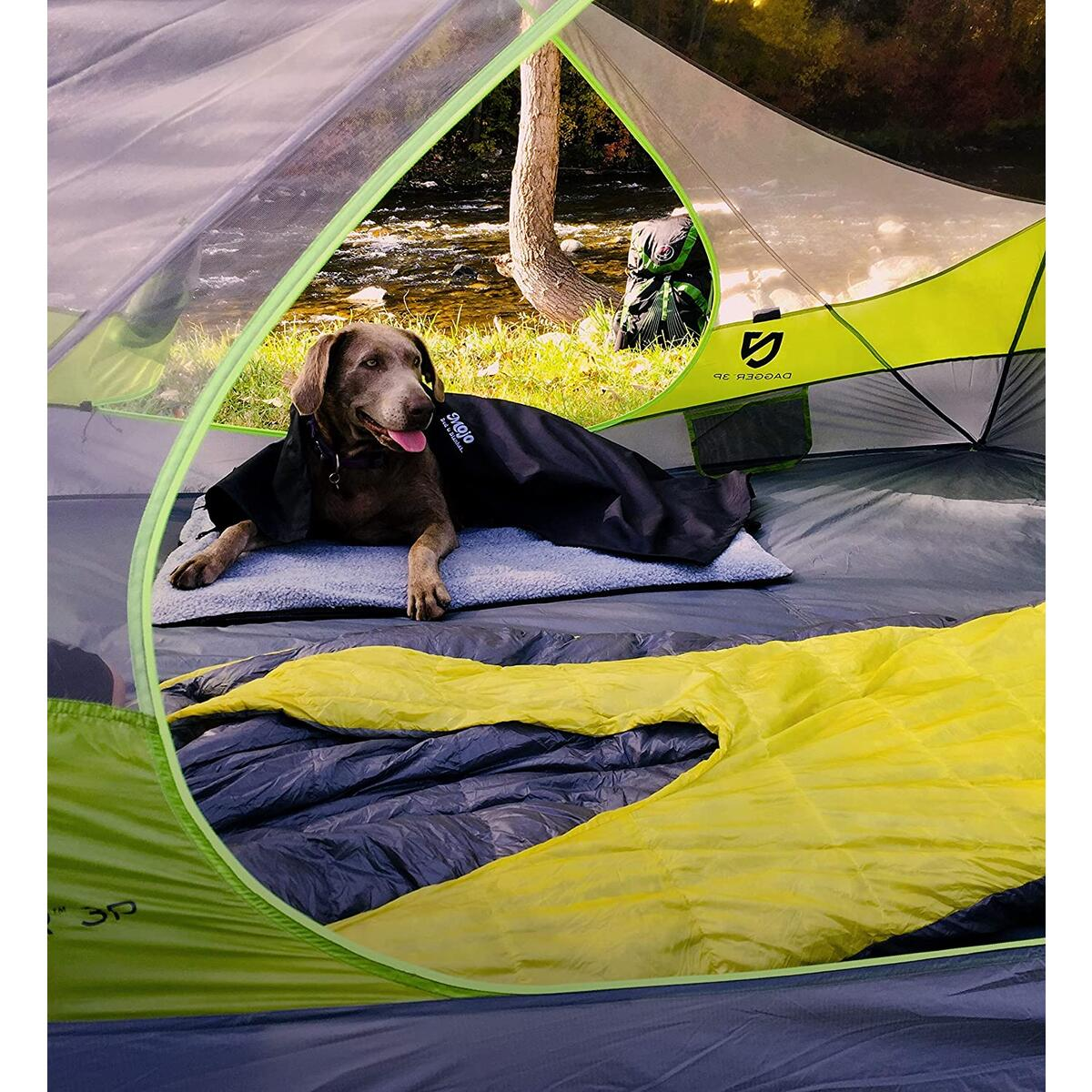 Camping & Hiking Inflatable Dog Bed by Mojo