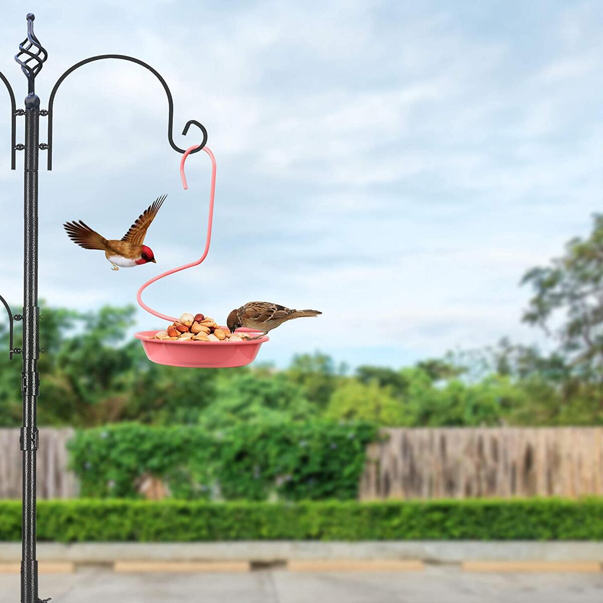 HOMENOTE Bird Feeder Tray Pink