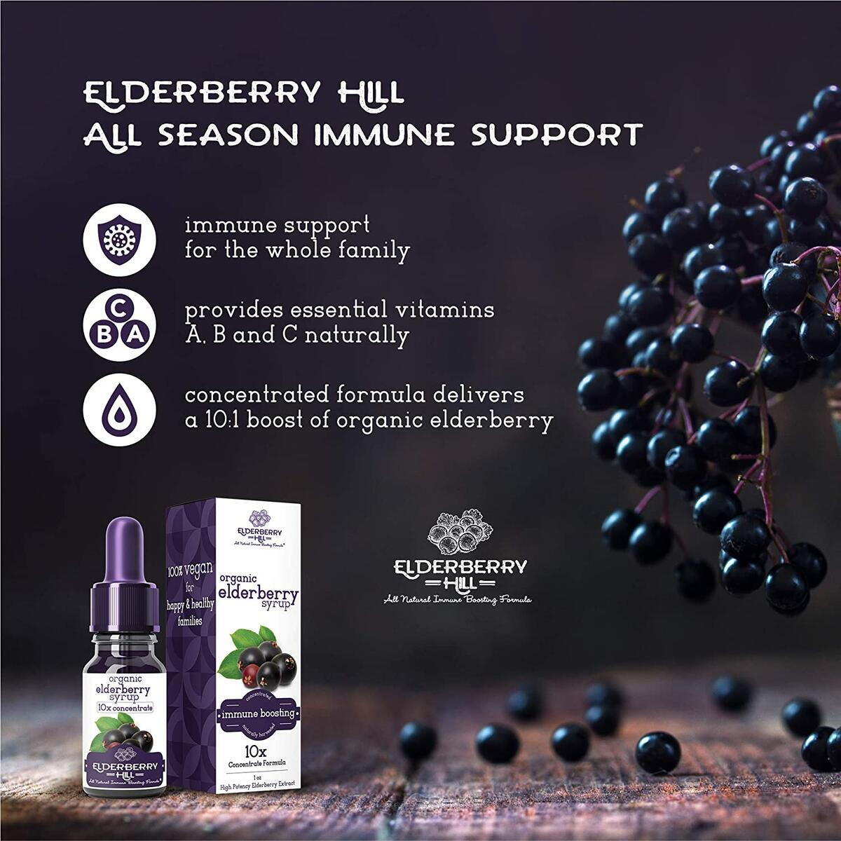 Elderberry Drops Liquid Extract, Daily Immune Support, 10x Strength Concentrate Syrup for Kids and Adults, No Added Sugar, Black Sambucus, 30 Servings