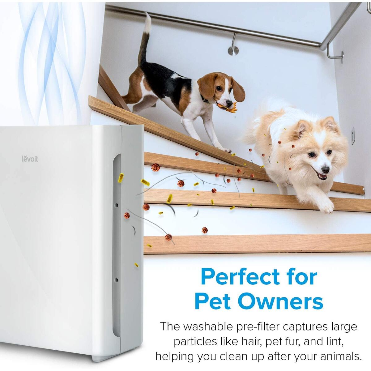 LEVOIT Air Purifier for Home with H13 True HEPA Filter Cleaner for Allergies and Pets, Smokers, Mold, Pollen, Dust, Quiet Odor Eliminators for Bedroom (1 Pack).