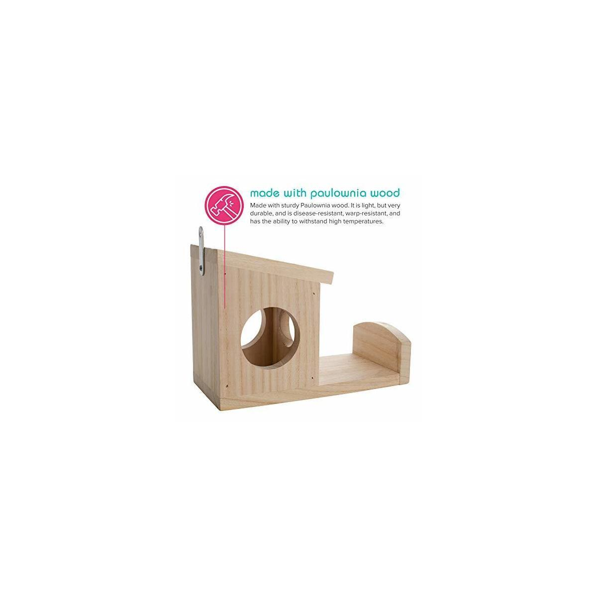 Nature's Hangout Squirrel Feeder for Feeding Your Furry Friends Outdoors - Environmentally Friendly Wood Feeder Holds Food, Nuts and Seeds - Hangs Outside Near The House so You Can Watch The Fun
