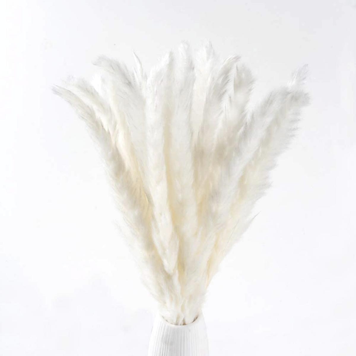 White Pampas Grass Decor